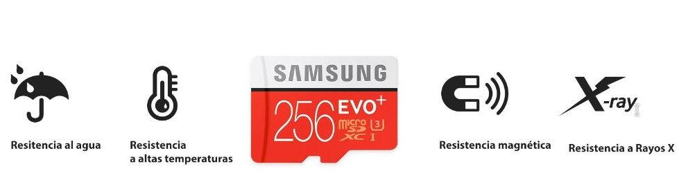 Tarjeta microSD EVO Plus