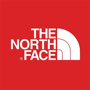 mochilas-de-marca-the-north-face