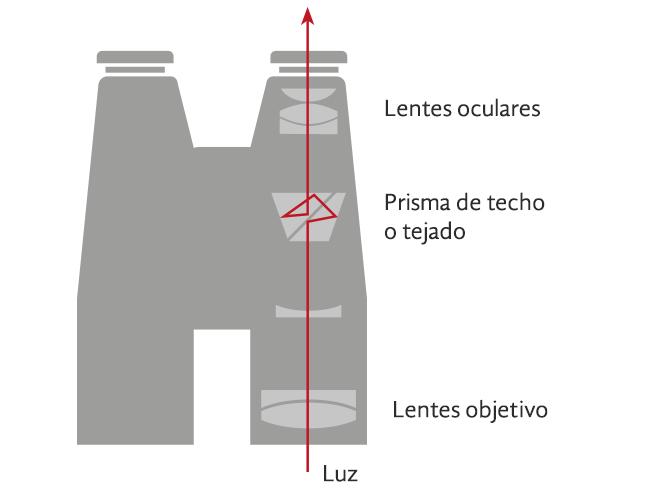 Esquema prismáticos